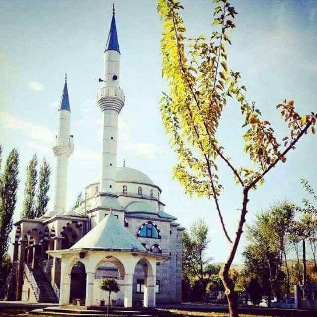 Эрдем мечити
